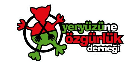 logo-son copy
