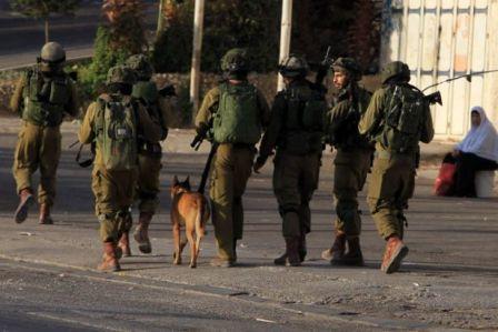 Filistinli 2 genç daha katledildi