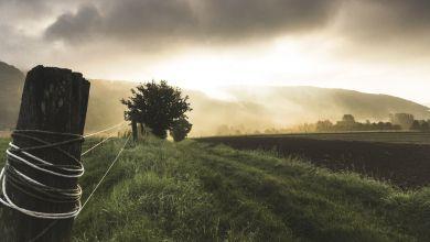 Photo of EMEK | Tarımın Tasfiyesi ve Koronavirüs Pandemisi!