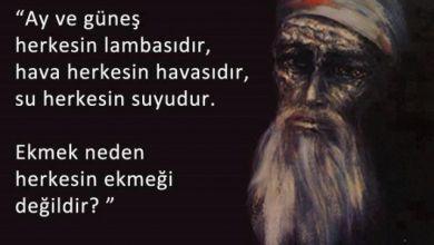 Photo of TAMER UYSAL* | İZNİK SÜRGÜNÜ