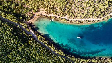 Photo of Cengiz Holding, Cennet Koyu'nu da katledecek!